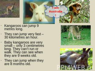 Kangaroos can jump 9 metres long.They can jump very fast – 30 kilometres an hour