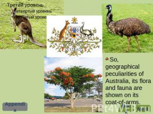 So, geographical peculiarities of Australia, its flora and fauna are shown on it