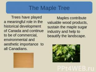 The Maple Tree Trees have played a meaningful role in the historical development