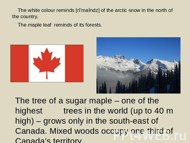 The white colour reminds [rI'maIndz] of the arctic snow in the north of the country. The maple leaf reminds of its forests. The tree of a sugar maple – one of the highest trees in the world (up to 40 m high) – grows only in the south-east of Canada.…