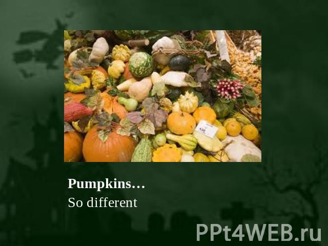 Pumpkins… So different
