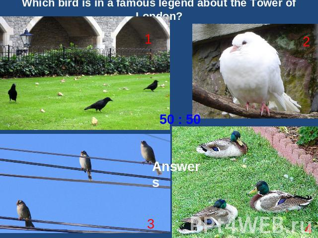 Which bird is in a famous legend about the Tower of London?