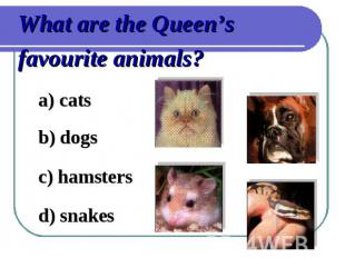 What are the Queen's favourite animals?