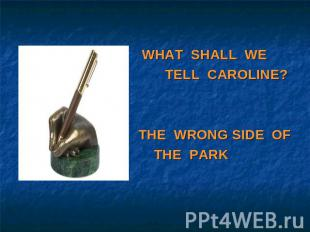 WHAT SHALL WE TELL CAROLINE?THE WRONG SIDE OF THE PARK