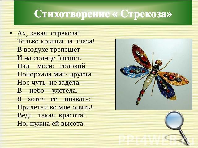 кукла стихи про стрекозу категория основном