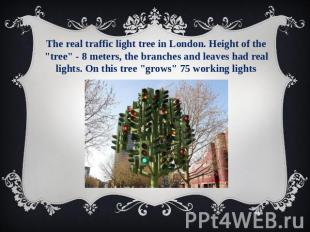 "The real traffic light tree in London. Height of the ""tree"" - 8 meters, the bran"