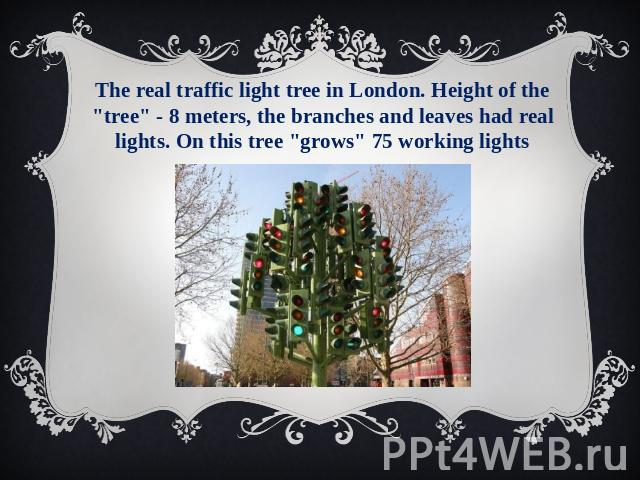 The real traffic light tree in London. Height of the