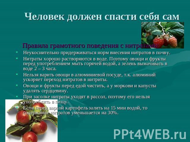 ниши ванную опасны ли нитраты в помидорах почистить