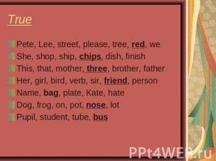 True Pete, Lee, street, please, tree, red, weShe, shop, ship, chips, dish, finis