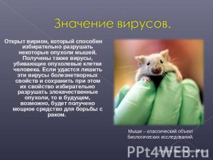Значение вирусов. Открыт вирион, который способен избирательно разрушать некотор