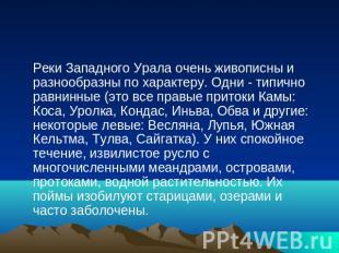 Реки Западного Урала очень живописны и разнообразны по характеру. Одни - типично