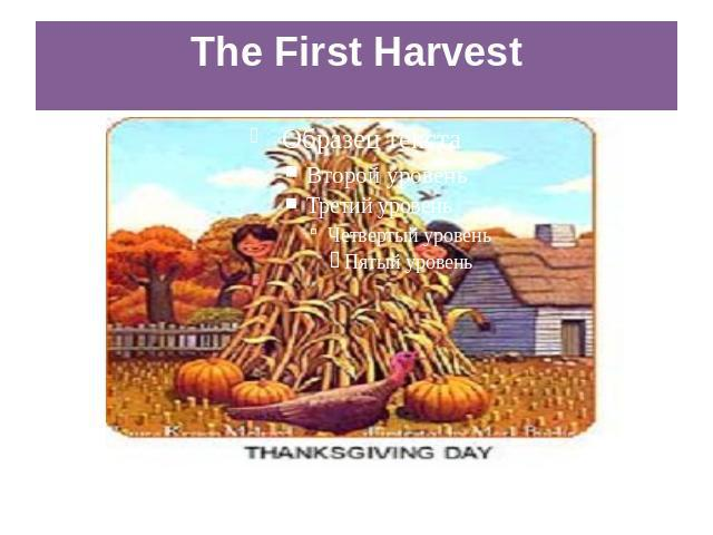 The First Harvest