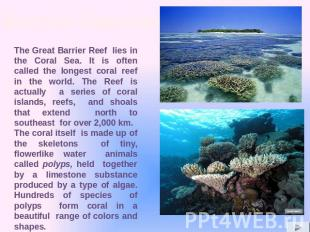 The Great Barrier Reef lies in the Coral Sea. It is often called the longest cor