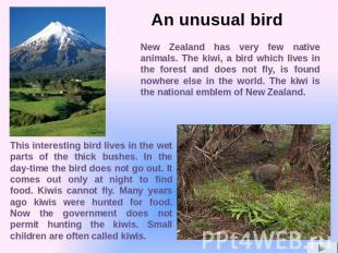 New Zealand has very few native animals. The kiwi, a bird which lives in the for