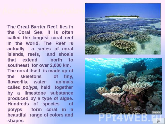 The Great Barrier Reef lies in the Coral Sea. It is often called the longest coral reef in the world. The Reef is actually a series of coral islands, reefs, and shoals that extend north to southeast for over 2,000 km. The coral itself is made up of …