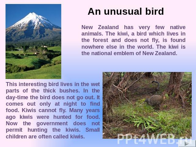 New Zealand has very few native animals. The kiwi, a bird which lives in the forest and does not fly, is found nowhere else in the world. The kiwi is the national emblem of New Zealand. This interesting bird lives in the wet parts of the thick bushe…