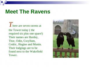 Meet The Ravens There are seven ravens at the Tower today ( the required six plu