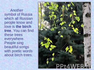 Another symbol of Russia which all Russian people know and love is the birch tre
