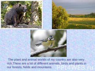 The plant and animal worlds of my country are also very rich.There are a lot of
