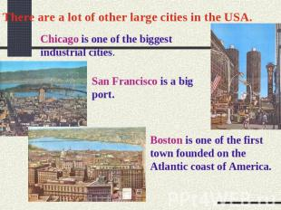 There are a lot of other large cities in the USA. Chicago is one of the biggest