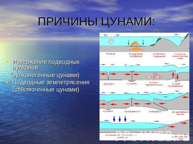 Реферат на тему цунами по английскому языку 1523