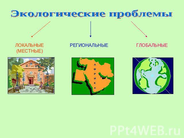 Обж 8 класс доклад на тему экология и безопасность