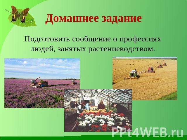 Доклад о профессиях людей занятых растениеводством 3687