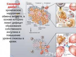 http://ppt4web.ru/images/242/15560/310/img2.jpg