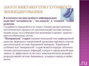 патогенез внутриутробного инфицирования В патогенезе внутриутробного инфицирован