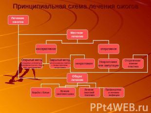 Принципиальная схема лечения ожогов
