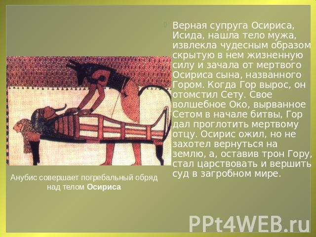 Marmot 490 молитва о возрождении древнего египта пошив