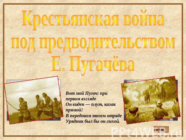 собак кошек сообщение о крестьянской войне под предводительством пугачева кратко конечно без