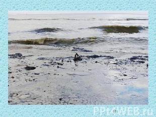 Проблема загрязнения океана 4 класс решение