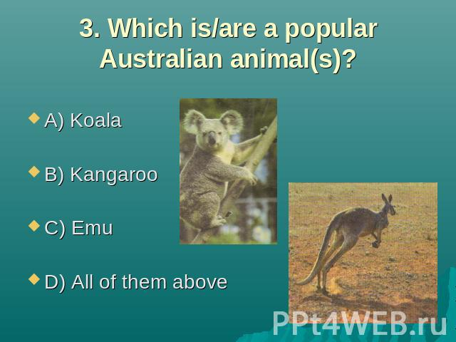 3. Which is/are a popular Australian animal(s)? A) Koala B) Kangaroo C) Emu D) All of them above