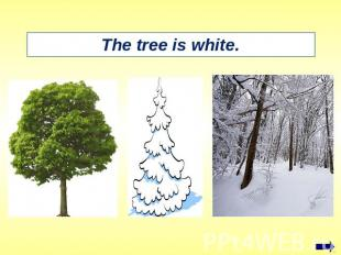 The tree is white.