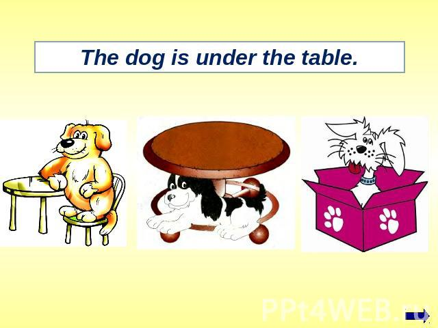 The dog is under the table.