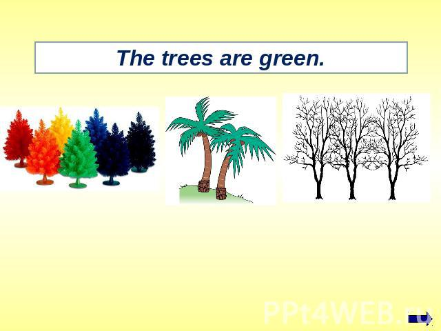 The trees are green.