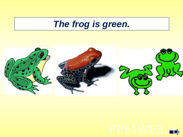 The frog is green.