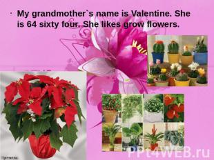 My grandmother`s name is Valentine. She is 64 sixty four. She likes grow flowers