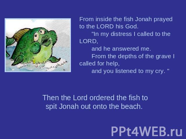 From inside the fish Jonah prayed to the LORD his God.