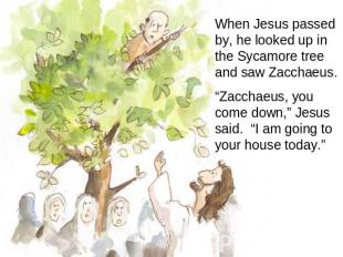 "When Jesus passed by, he looked up in the Sycamore tree and saw Zacchaeus. ""Zacc"