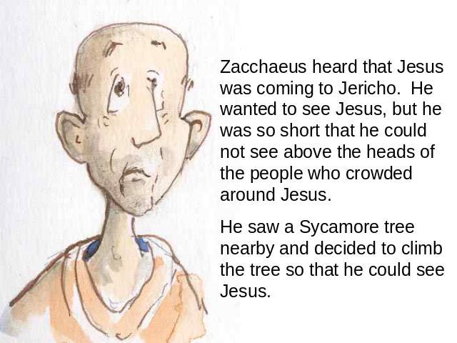 Zacchaeus heard that Jesus was coming to Jericho. He wanted to see Jesus, but he was so short that he could not see above the heads of the people who crowded around Jesus. He saw a Sycamore tree nearby and decided to climb the tree so that he could …