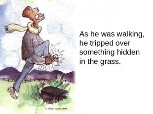 As he was walking, he tripped over something hidden in the grass.