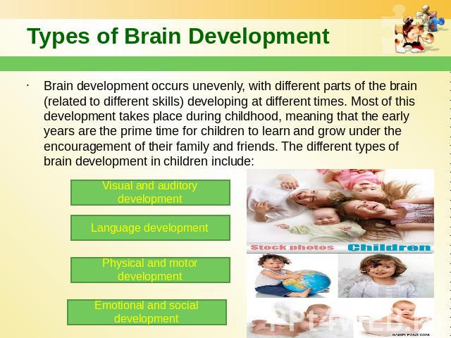 Types of Brain Development Brain development occurs unevenly, with different parts of the brain (related to different skills) developing at different times. Most of this development takes place during childhood, meaning that the early years are the …