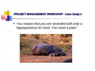 PROJECT MANAGEMENT WORKSHOP - Case Study 1 You realize that you are stranded wit
