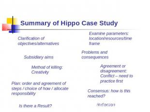 Summary of Hippo Case Study