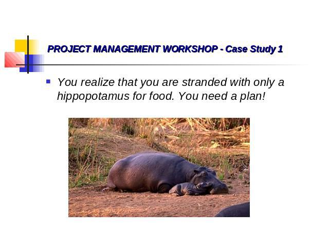 PROJECT MANAGEMENT WORKSHOP - Case Study 1 You realize that you are stranded with only a hippopotamus for food. You need a plan! You realize that you are stranded with only a hippopotamus for food. You need a plan!