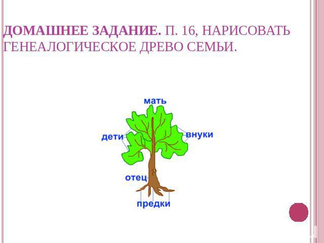 генеалогическое древо нарисовать 5 кл запустившую серийное производство