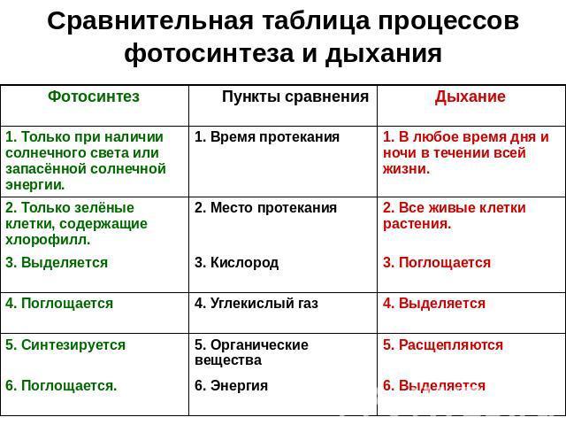 Таблица фотосинтеза 9 класс