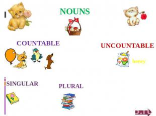 NOUNS UNCOUNTABLE honey PLURAL SINGULAR COUNTABLE